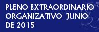 PLENO EXTRAORDINARIO ORGANIZATIVO DE JUNIO DE 2015