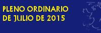 PLENO ORDINARIO DE JULIO DE 2015
