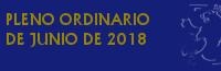 Pleno Ordinario de Junio de 2018