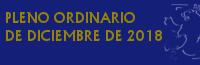 Pleno Ordinario de Diciembre de 2018