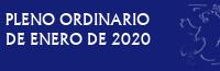 Pleno Ordinario de Enero de 2020