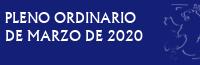 Pleno Ordinario de Marzo de 2020