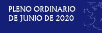 Pleno Ordinario de Junio de 2020