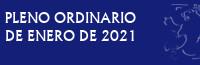 Pleno Ordinario de Enero de 2021