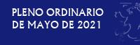 Pleno Ordinario de Mayo de 2021