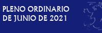 Pleno Ordinario de Junio de 2021