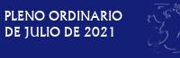 Pleno Ordinario de Julio de 2021
